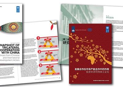 United Nations Development Programme China